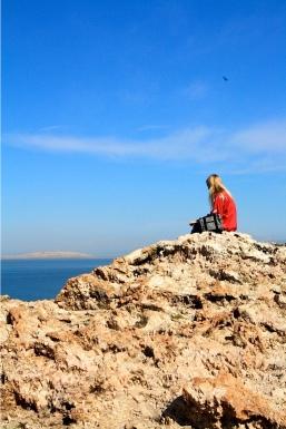 Sage contemplating