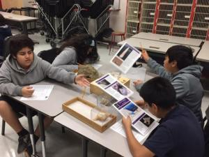 Students collaborating on their projects (Project Photo)